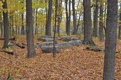 Eramosa Karst Conservation Area - October 26, 2014. An unusual formation of very large stones Stock Photo