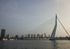 Erasbrug in Rotterdam Stock Photography