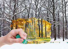 Eraser erases autumn and winter woods is appearing Stock Photo