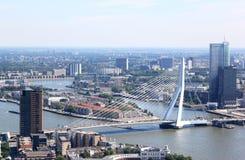 Erasmus桥梁在鹿特丹,荷兰 库存图片