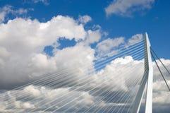 Erasmus桥梁,鹿特丹 免版税库存照片