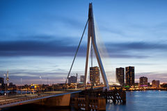 Erasmus鹿特丹桥梁和城市地平线黄昏的 免版税库存照片