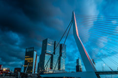 Erasmus bridge in stormy weather. The Erasmus bridge Rotterdam in stormy wheater with the modern architecture in the backgroud royalty free stock photos