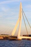 Erasmus Bridge Stock Afbeeldingen