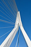 Erasmus Bridge. The Erasmus Bridge in Rotterdam. View from underneath Royalty Free Stock Images