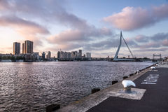 Erasmus Bridge. The Erasmus Bridge is a cable-stayed bridge across the Nieuwe Maas, linking the northern and southern regions of Rotterdam, Netherlands Stock Photos