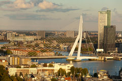 Erasmus Bridge and Central Rotterdam Stock Photography