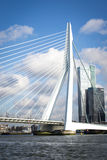 Erasmus Bridge Day Royalty Free Stock Photo