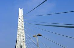 Erasmus Bridge Detail Royalty Free Stock Photography