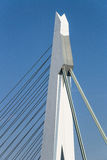 The Erasmus bridge detail Stock Photos