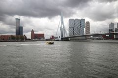 The Erasmus bridge erasmusbrug in Dutch in Rotterdam , Netherlands. In the middle of the city over river Nieuwe Maas Stock Image