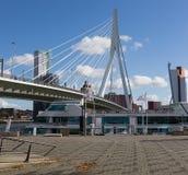 Erasmus Bridge in het centrum van Rotterdam stock foto