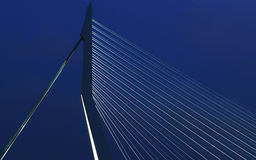 Erasmus Bridge Stock Images