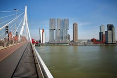 Erasmus bridge over the river Meuse with modern skyscrapers in the background, Rotterdam. Netherlands royalty free stock photos