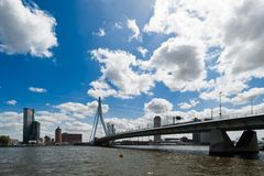Erasmus bridge in Rotterdam Stock Image