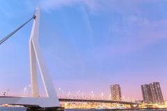 Erasmus Bridge - Rotterdam. The famous Erasmus bridge in Rotterdam, the Netherlands. Completed in 1996 the bridge is 808 meters long and its tallest point is at stock image