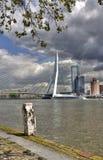 Erasmus Bridge in Rotterdam Royalty Free Stock Images