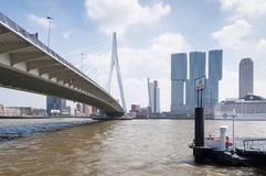 Erasmus bridge in Rotterdam and business buildings Stock Image