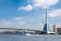 Erasmus bridge in Rotterdam and business buildings Royalty Free Stock Photography