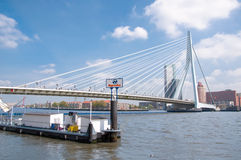 Erasmus bridge in Rotterdam and business buildings Royalty Free Stock Image