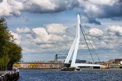 Erasmus Bridge in Rotterdam Royalty Free Stock Images