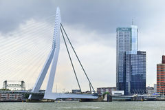 Erasmus Bridge in Rotterdam, Holland Royalty Free Stock Image