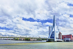 Erasmus Bridge in Rotterdam, Holland Stock Image