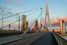 Erasmus bridge in Rotterdam, Holland, Netherlands. stock image