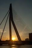 Erasmus Bridge Rotterdam, Nederländerna Fotografering för Bildbyråer