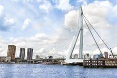Erasmus Bridge in Rotterdam royalty free stock photos