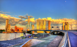 Erasmus Bridge in Rotterdam Stock Images