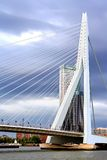 Erasmus Bridge in Rotterdam, the Netherlands Royalty Free Stock Image