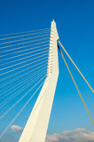 Erasmus Bridge,  Rotterdam, Netherlands Royalty Free Stock Photography