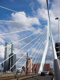 Erasmus Bridge in Rotterdam in the Netherlands Royalty Free Stock Photo