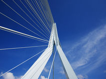 Erasmus Bridge in Rotterdam in the Netherlands Stock Photo