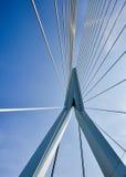Erasmus bridge in Rotterdam Netherlands Holland Stock Image