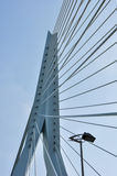 Erasmus bridge in Rotterdam Netherlands Holland Royalty Free Stock Image