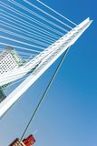 The Erasmus Bridge in Rotterdam Royalty Free Stock Images