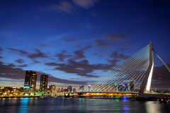 Erasmus bridge, Rotterdam at night royalty free stock image