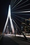Erasmus Bridge in Rotterdam at night Stock Images
