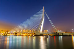 Erasmus bridge Rotterdam Royalty Free Stock Photo