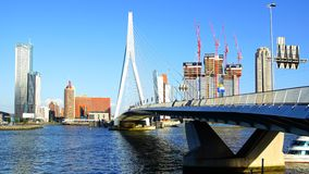 Erasmus Bridge and Rotterdam port. Rotterdam Royalty Free Stock Images