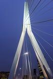 Erasmus Bridge Rotterdam, Südholland, die Niederlande Lizenzfreie Stockfotografie