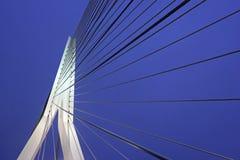 Erasmus Bridge Rotterdam, Südholland, die Niederlande Stockfotografie