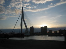 Erasmus Bridge Rotterdam Skyline Sunset Stock Afbeelding