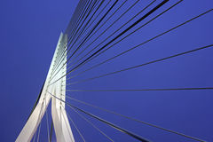 Erasmus Bridge.  Rotterdam, South Holland, Netherlands. Stock Photography