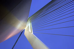 Erasmus Bridge.  Rotterdam, South Holland, Netherlands. Stock Photos