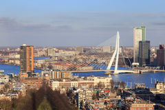 Erasmus bridge, Rotterdam Stock Images