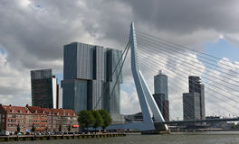 Erasmus bridge and skyscrapers of Rotterdam Stock Photos