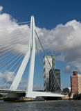 Erasmus bridge and skyscrapers of Rotterdam Royalty Free Stock Photo